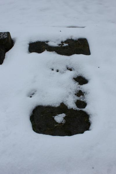 Section E - Row 1 - 5 -  Fallen stone