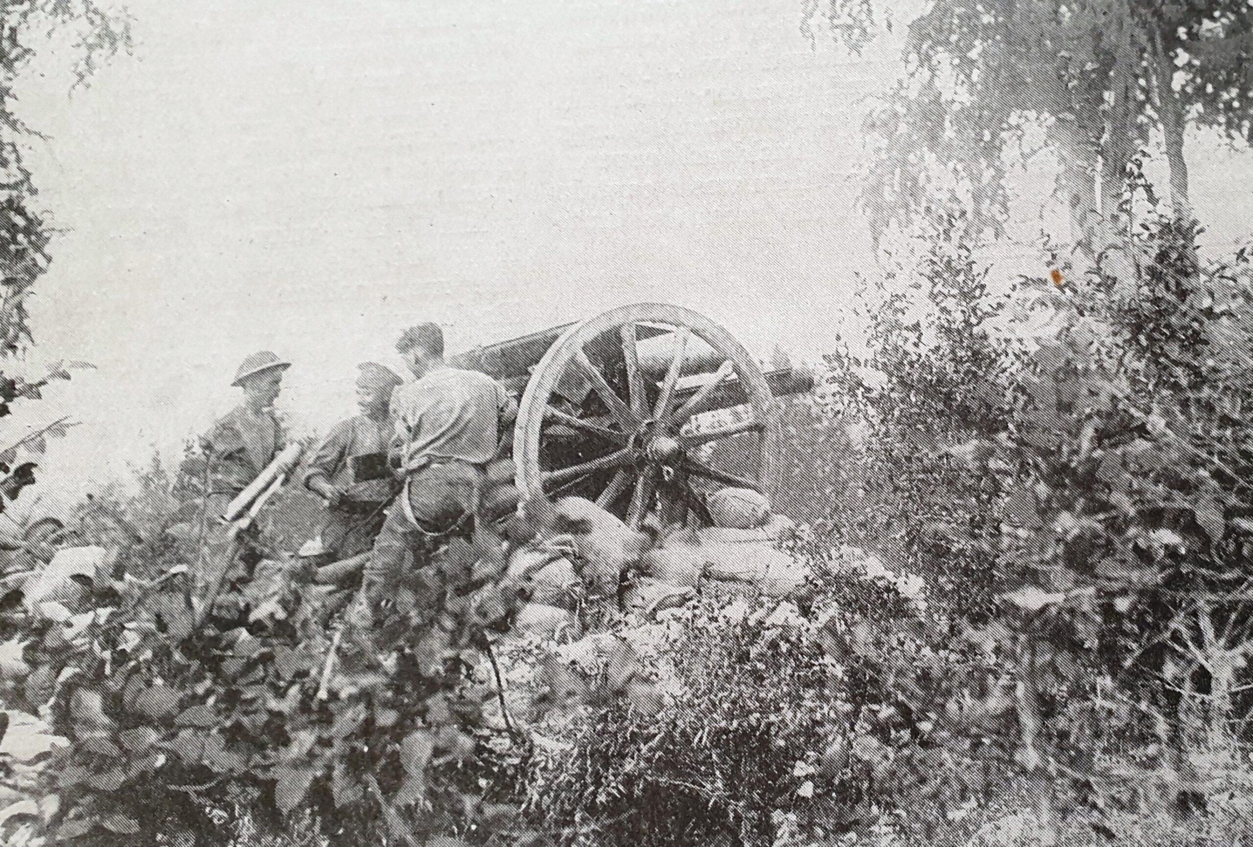 gun184