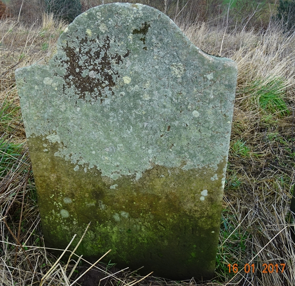 Horndean churchyard - 7 - Daniel