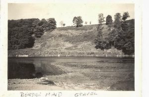 Border Maid 