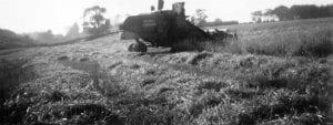 Shellacrees 1950