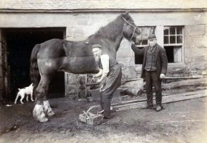 Shoeing a horse outside Marshal''s Blacksmith''s shop Cornhill