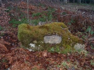 Earls Stone in the shape of a saddle. This stone can be found in the Hirsel Woods. This is where the 11th Earl fell from his horse and died.